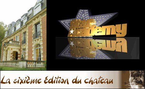 Le Best off de  the Story of the star académy
