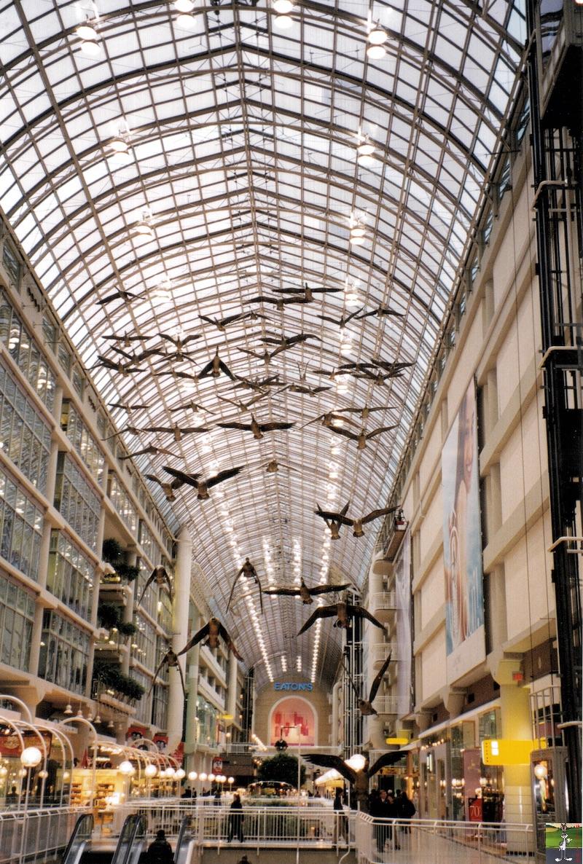 1999-02-27 / 1999-03-05 : Opération Castor au Canada Operation_Castor_042