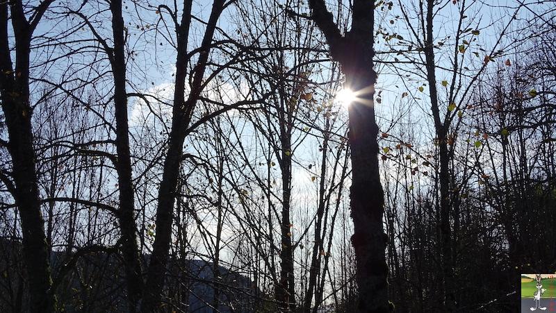 2019-11-16 : Balade à La Mainmorte (39) 2019-11-16_balade_la_mainmorte_18
