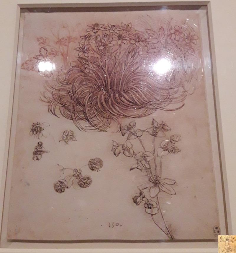 [75 - FR] : 2020-01-22 : Exposition Léonard de Vinci - Louvre - Paris 096