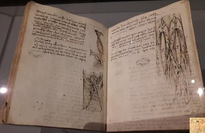 [75 - FR] : 2020-01-22 : Exposition Léonard de Vinci - Louvre - Paris 098
