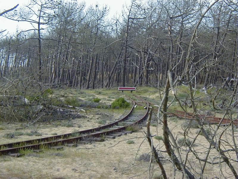 [17 - FR] 2003-05-09 et 10 - Le p'tit train de Saint-Trojan 2013-05_oleron_17