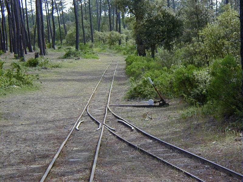 [17 - FR] 2003-05-09 et 10 - Le p'tit train de Saint-Trojan 2013-05_oleron_24