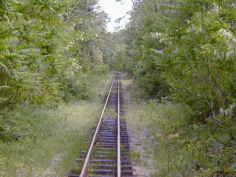 [17 - FR] 2003-05-09 et 10 - Le p'tit train de Saint-Trojan 2013-05_oleron_37
