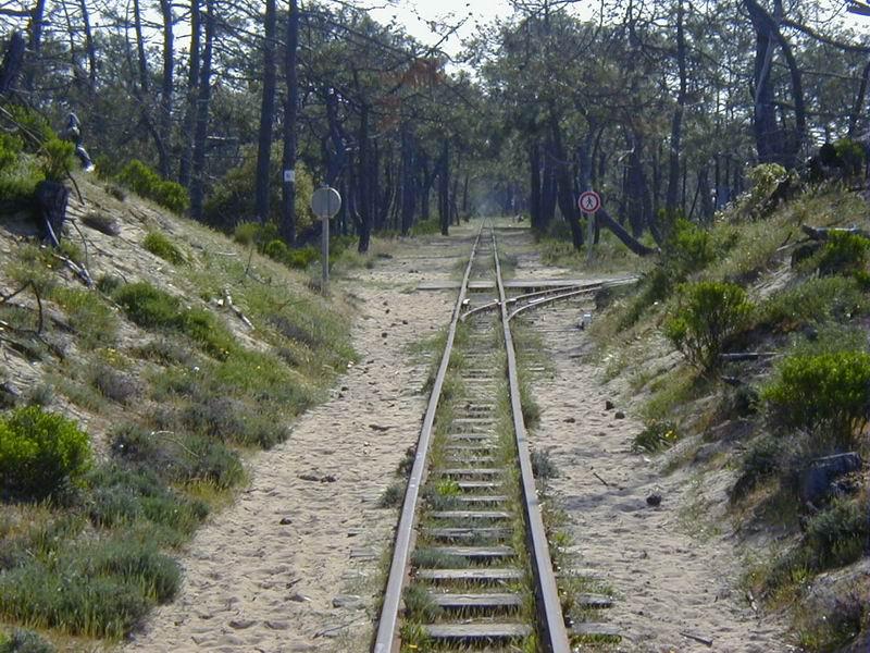 [17 - FR] 2003-05-09 et 10 - Le p'tit train de Saint-Trojan 2013-05_oleron_53