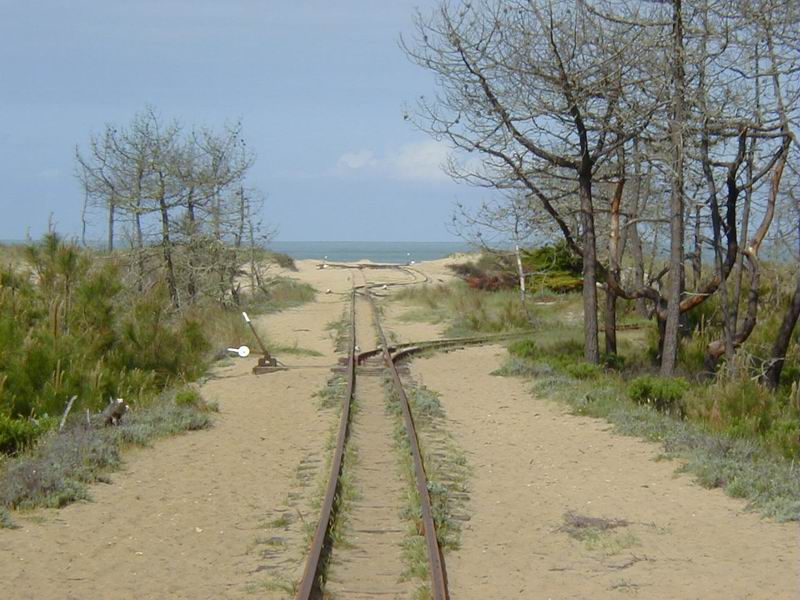 [17 - FR] 2003-05-09 et 10 - Le p'tit train de Saint-Trojan 2013-05_oleron_54