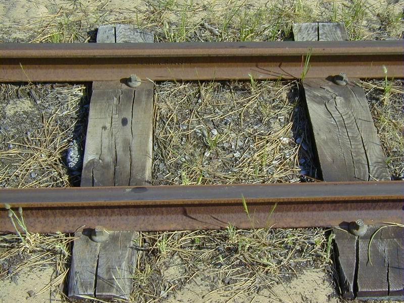 [17 - FR] 2003-05-09 et 10 - Le p'tit train de Saint-Trojan 2013-05_oleron_55