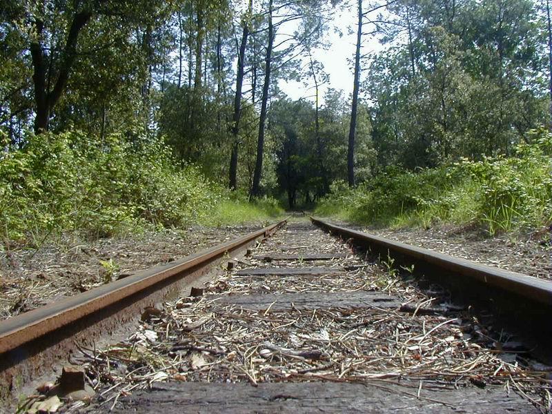 [17 - FR] 2003-05-09 et 10 - Le p'tit train de Saint-Trojan 2013-05_oleron_63