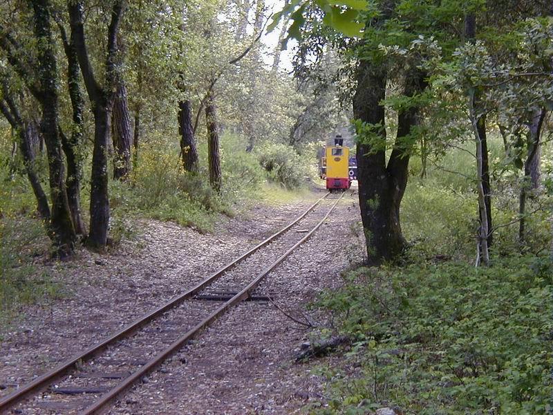 [17 - FR] 2003-05-09 et 10 - Le p'tit train de Saint-Trojan 2013-05_oleron_64