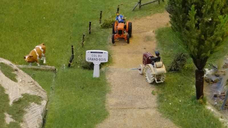 [25 - FR] 2015-10-24 : Haut-Doubs Miniatures - Valdahon - Page 2 HDM2015_171
