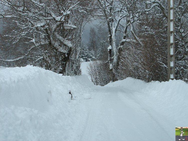 2010-01-30 : Neige 2010-01-30_neige_03