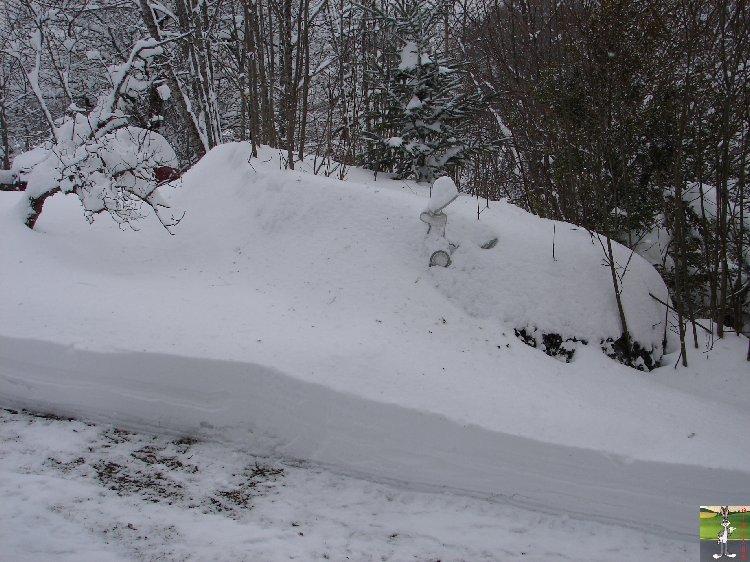 2010-01-30 : Neige 2010-01-30_neige_07