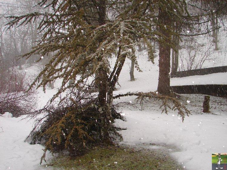 2010-02-24 : Neige à la Mainmorte (39) 2010-02-24_neige_01