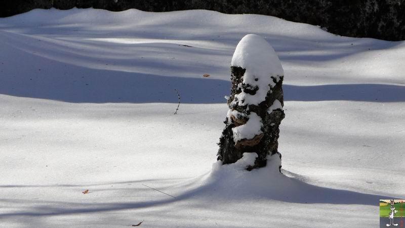 """Les 4 Saisons de """"Mon Jura"""" 2010-12-26_neige_01"""