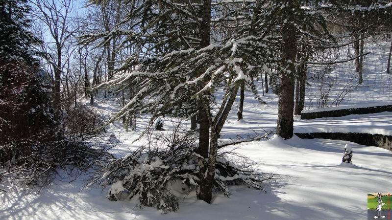 """Les 4 Saisons de """"Mon Jura"""" 2010-12-26_neige_03"""