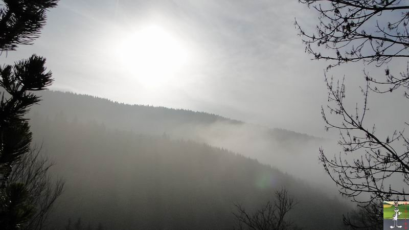 """Les 4 Saisons de """"Mon Jura"""" 2011-01-30_brouillard_soleil_01"""