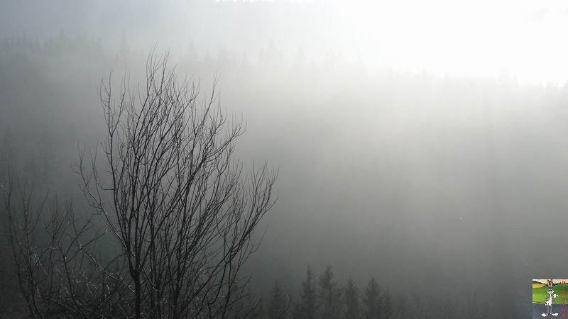 """Les 4 Saisons de """"Mon Jura"""" 2011-01-30_brouillard_soleil_03"""