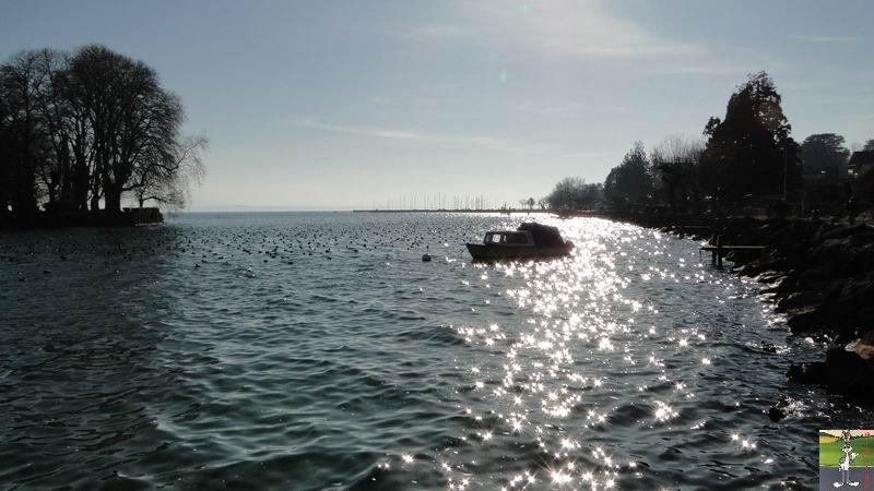 """Les 4 Saisons de """"Mon Jura"""" 2011-02-05_lac_leman_rolle_06"""