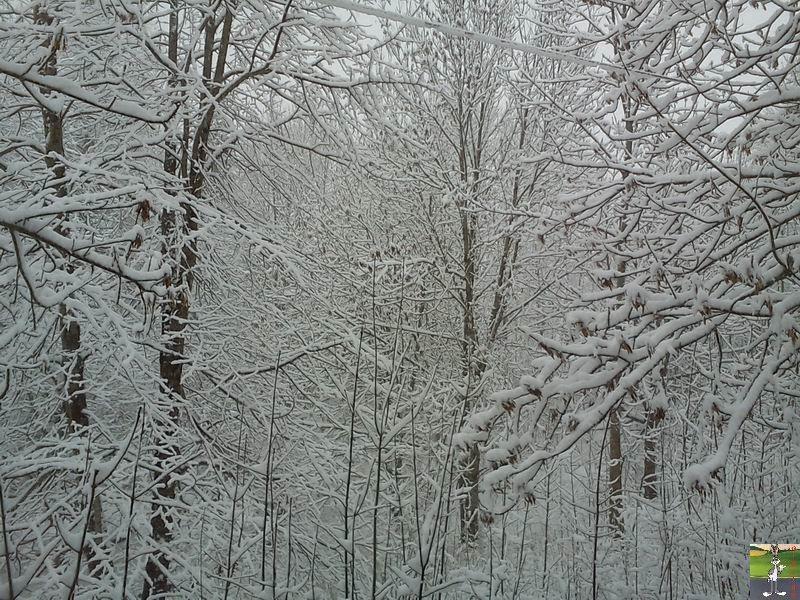 """Les 4 Saisons de """"Mon Jura"""" 2011-02-27_neige_02"""