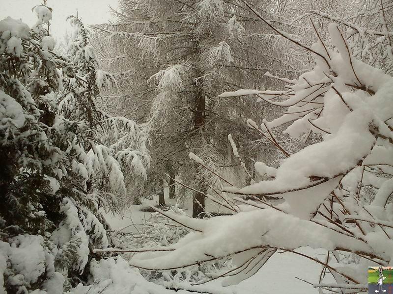 """Les 4 Saisons de """"Mon Jura"""" 2011-02-27_neige_05"""
