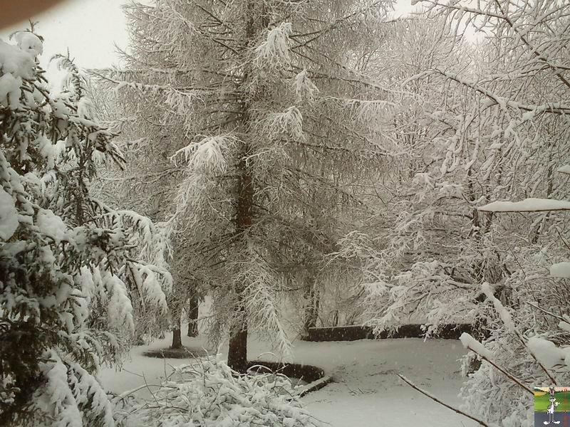 """Les 4 Saisons de """"Mon Jura"""" 2011-02-27_neige_06"""