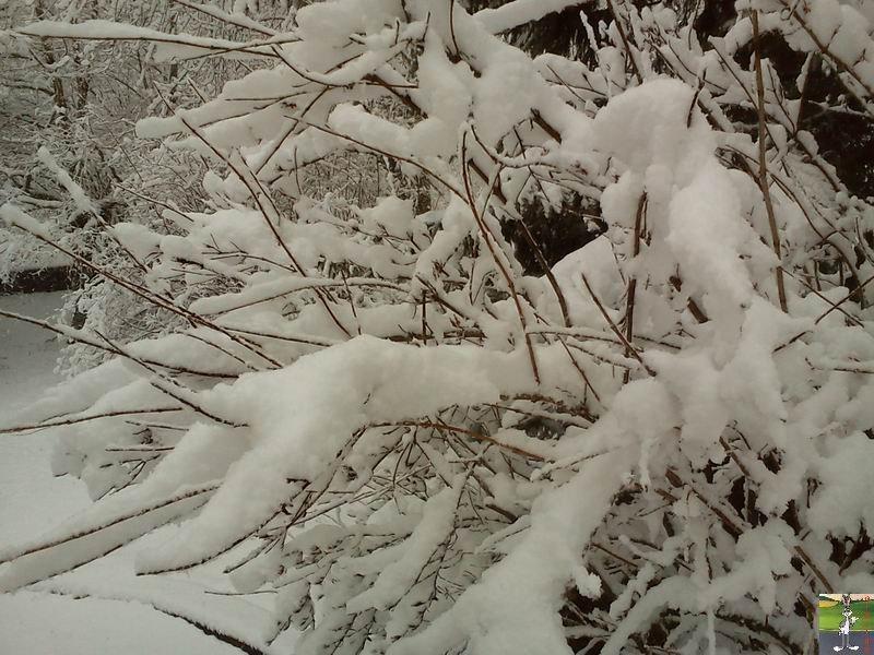 """Les 4 Saisons de """"Mon Jura"""" 2011-02-27_neige_07"""