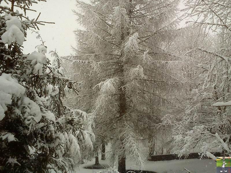 """Les 4 Saisons de """"Mon Jura"""" 2011-02-27_neige_08"""