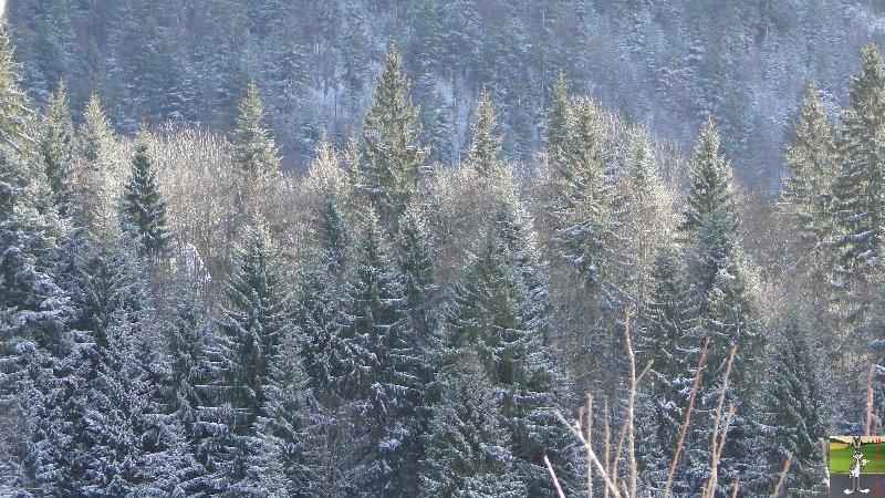2011-12-25 : Neige et soleil à La Mainmorte (39)   2011-12-25_neige_04