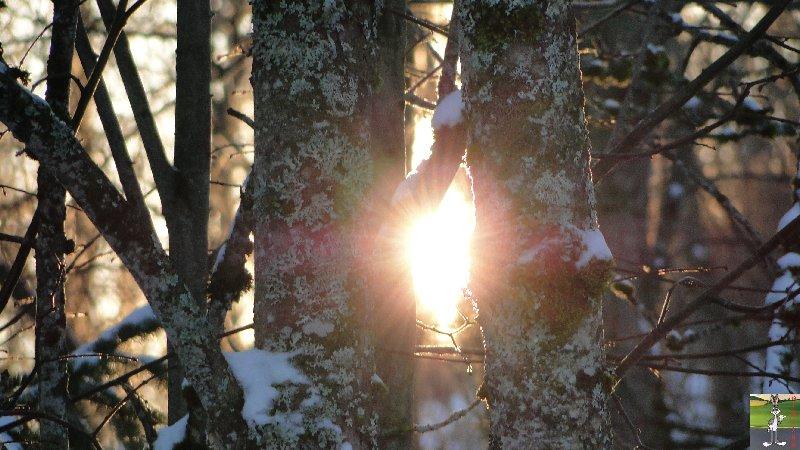 2011-12-25 : Neige et soleil à La Mainmorte (39)   2011-12-25_neige_07