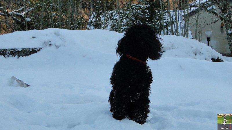 2011-12-25 : Neige et soleil à La Mainmorte (39)   2011-12-25_neige_08