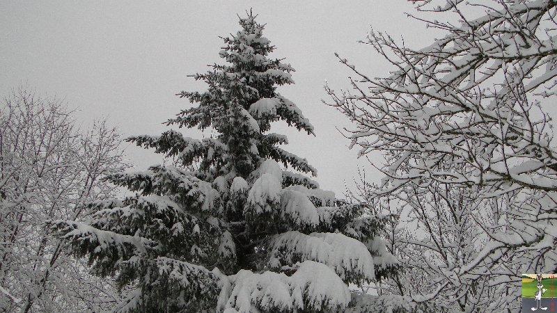 """Les 4 Saisons de """"Mon Jura"""" 2011-12-30_neige_03"""