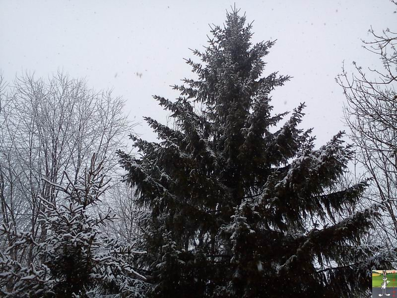 """Les 4 Saisons de """"Mon Jura"""" - Page 2 2012-02-19_neige_05"""