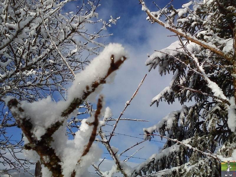 """Les 4 Saisons de """"Mon Jura"""" - Page 2 2012-02-19_neige_16"""