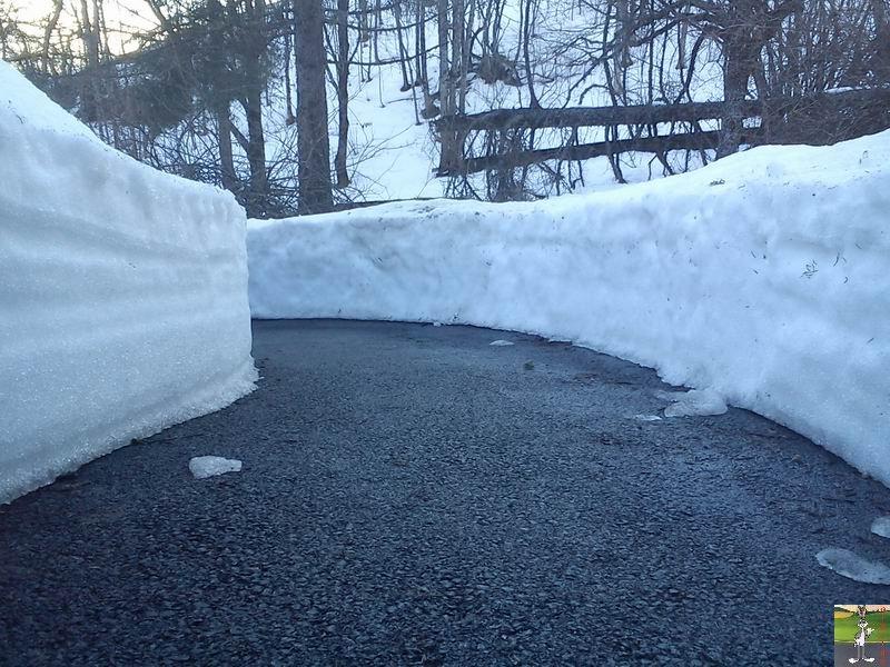 2012-02-25 : Neige à La Mainmorte (39)  2012-02-25_neige_02