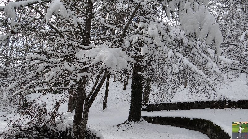 """Les 4 Saisons de """"Mon Jura"""" - Page 2 2012-11-30_neige_01"""