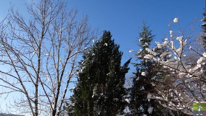 2012-12-01 : Neige à La Mainmorte (39) 2012-12-01_neige_01