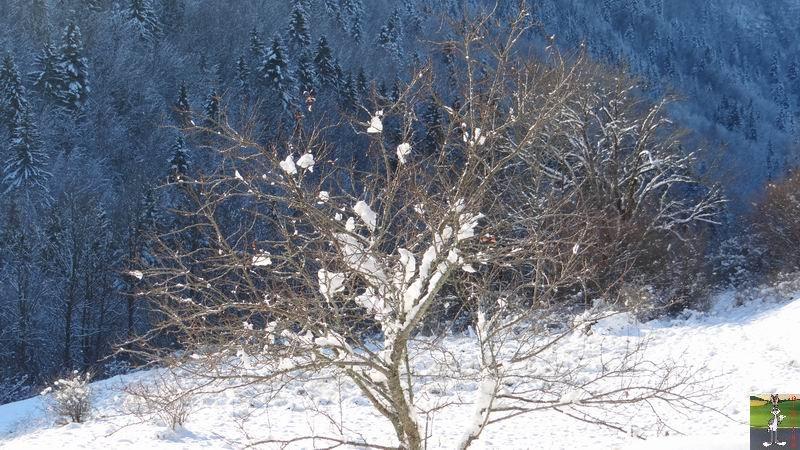 """Les 4 Saisons de """"Mon Jura"""" - Page 2 2012-12-01_neige_04"""