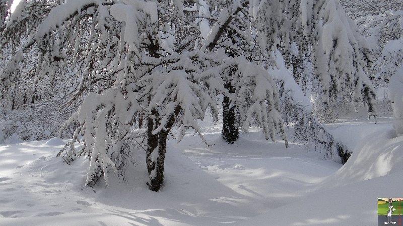"""Les 4 Saisons de """"Mon Jura"""" - Page 3 2012-12-08_neige_14"""