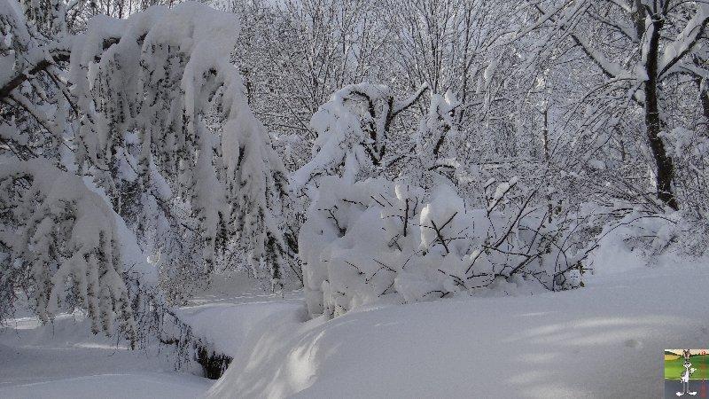 """Les 4 Saisons de """"Mon Jura"""" - Page 3 2012-12-08_neige_15"""