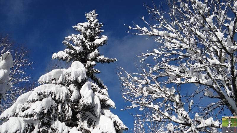 """Les 4 Saisons de """"Mon Jura"""" - Page 3 2012-12-09_neige_05"""