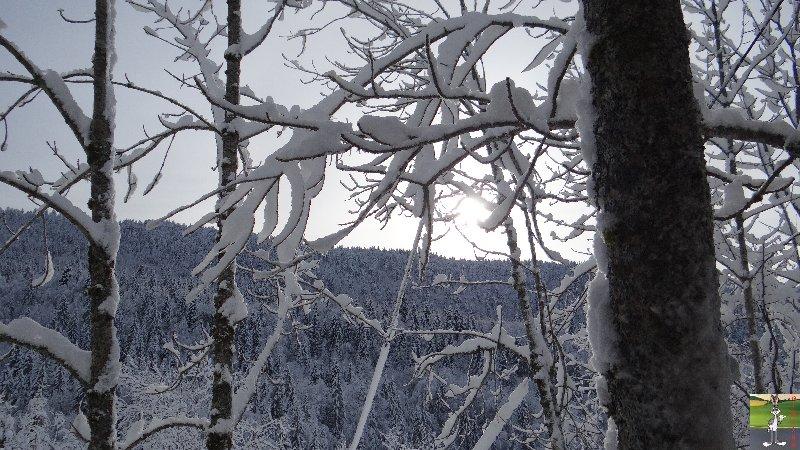 """Les 4 Saisons de """"Mon Jura"""" - Page 3 2013-01-12_neige_soleil_02"""