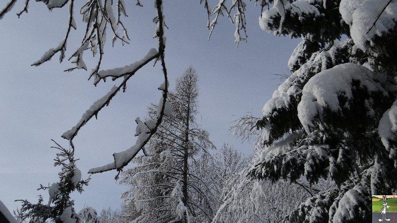 """Les 4 Saisons de """"Mon Jura"""" - Page 3 2013-01-12_neige_soleil_08"""