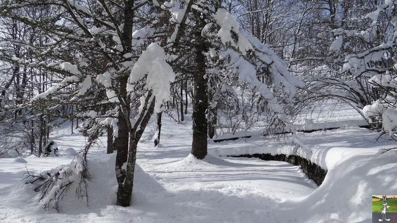 """Les 4 Saisons de """"Mon Jura"""" - Page 3 2013-02-10_neige_soleil_01"""