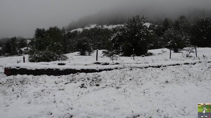2013-10-11 : Première neige à La Mainmorte (39) 2013-10-11_premiere_neige_08