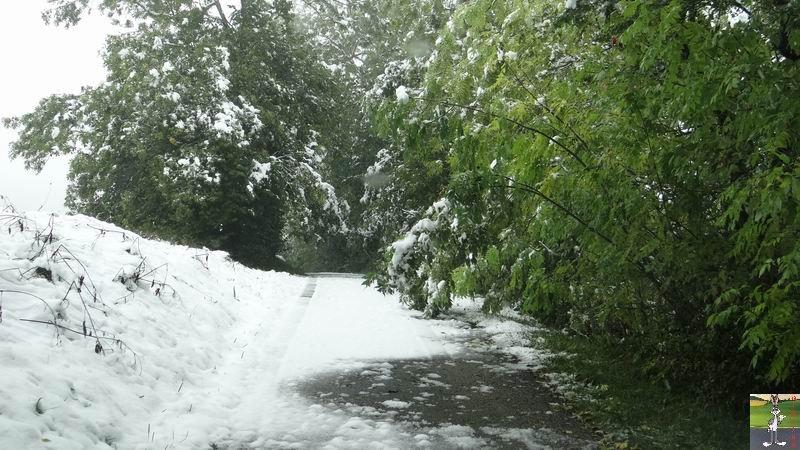 2013-10-11 : Première neige à La Mainmorte (39) 2013-10-11_premiere_neige_11