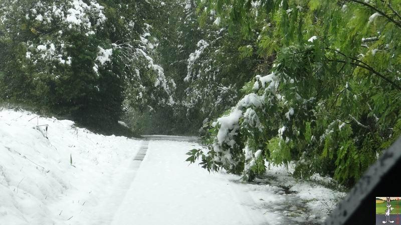 2013-10-11 : Première neige à La Mainmorte (39) 2013-10-11_premiere_neige_12
