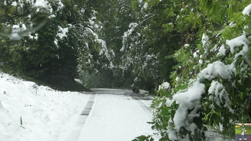 2013-10-11 : Première neige à La Mainmorte (39) 2013-10-11_premiere_neige_13