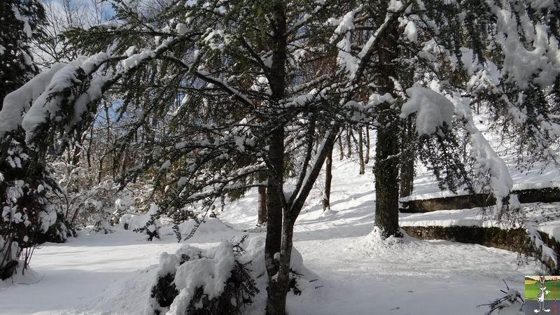 2013-11-24 : Neige et soleil à La Mainmorte (39) 2013-11-24_neige_01