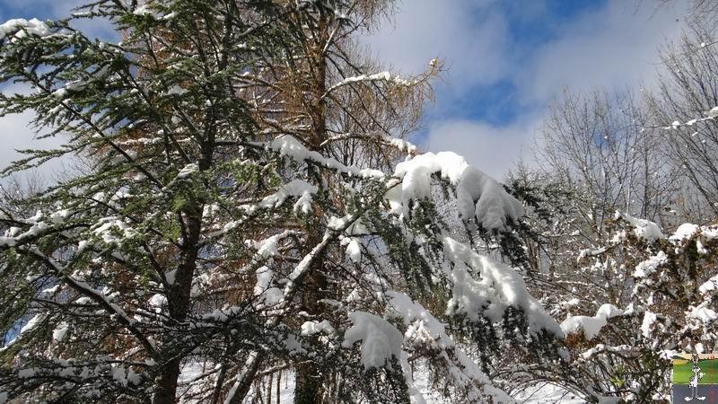 2013-11-24 : Neige et soleil à La Mainmorte (39) 2013-11-24_neige_02