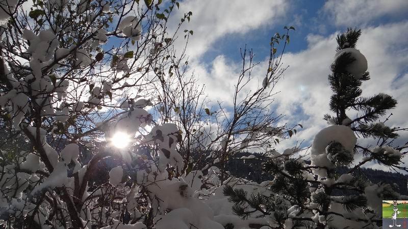 2013-11-24 : Neige et soleil à La Mainmorte (39) 2013-11-24_neige_03